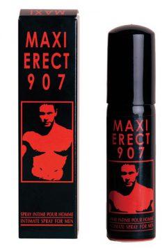 afbeelding Maxi Erectie '907
